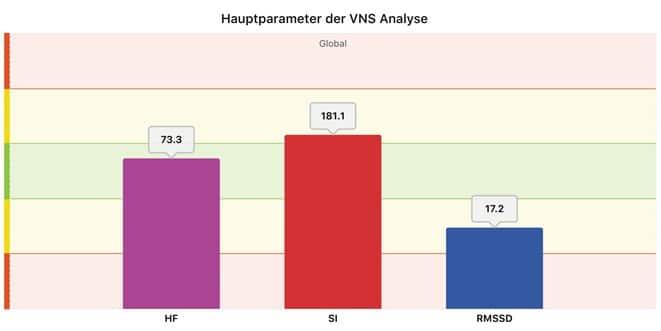 HRV-Messung, Hauptparameter der VNS Analyse